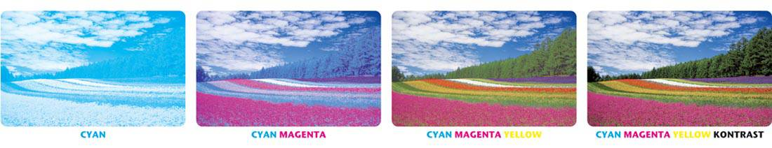 Plastikkarten Offsetdruck Farbfolge