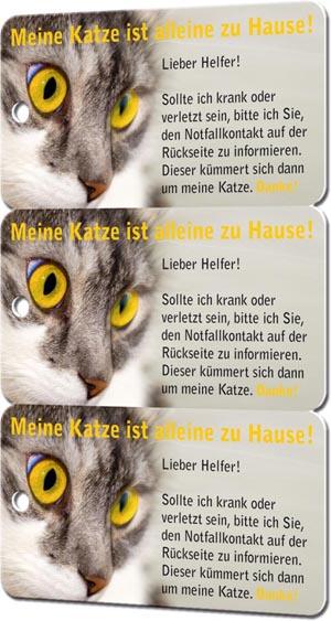Notfallkarten Katzen 3er-Set