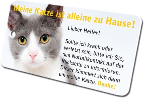 Notfallkarten Katzen