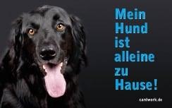 Kostenlose Notfallkarten Hunde zum Ausdrucken Hovawart